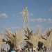 Thumbnail image for From OB to Burning Man and back – with pics