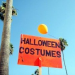 Thumbnail image for Getting Ready for the Big Day – Halloween Costumes in Ocean Beach