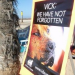 Thumbnail image for Protest At Dog Beach Aimed At NFL's Animal Cruelty Policy