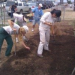 Thumbnail image for San Diego Community Farms and Gardens taking root in OB