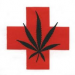 Thumbnail image for Jesus, George Washington and San Diego's Medical Marijuana Struggle
