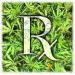 Thumbnail image for The Patient Care Association of California Succeeds in Having Cannabis Collective Ban Repealed in San Diego