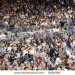 Thumbnail image for The Crowd at the Ball Game