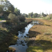 """Thumbnail image for Rose Creek Festival: """"Love Your Wetlands Day"""" in Mission Bay"""