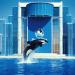 Thumbnail image for Sea World Entertainment and Guantanamo Bay