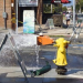 Thumbnail image for Is the Drought Over in Ocean Beach?