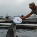 Thumbnail image for Diver Drowning in Navy Dolphin Program Should Never Have Happened