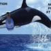 Thumbnail image for SeaWorld is Guilty of Disturbing the Peace